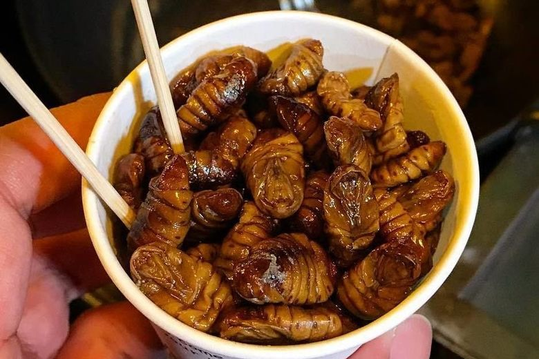 insects we can eat